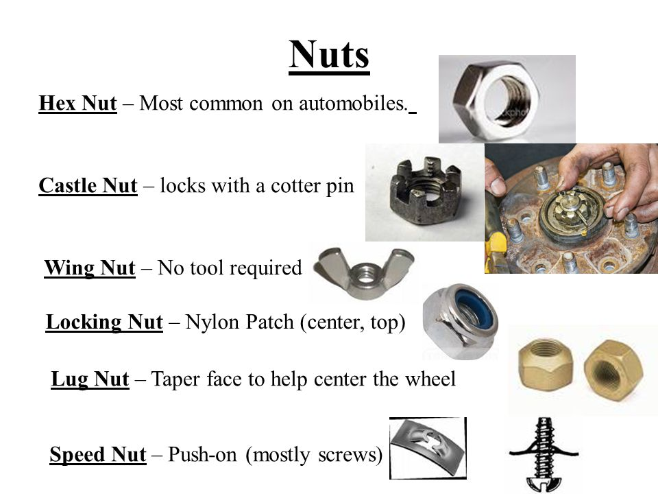 Nuts Hex Nut – Most common on automobiles.