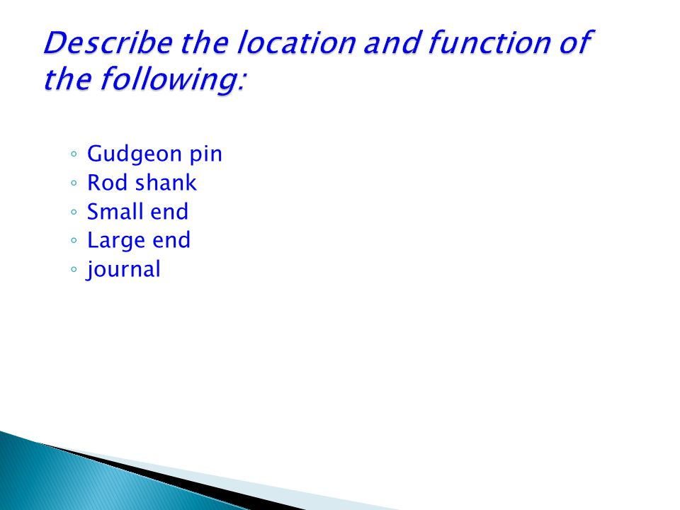 Describe the location and function of the following: