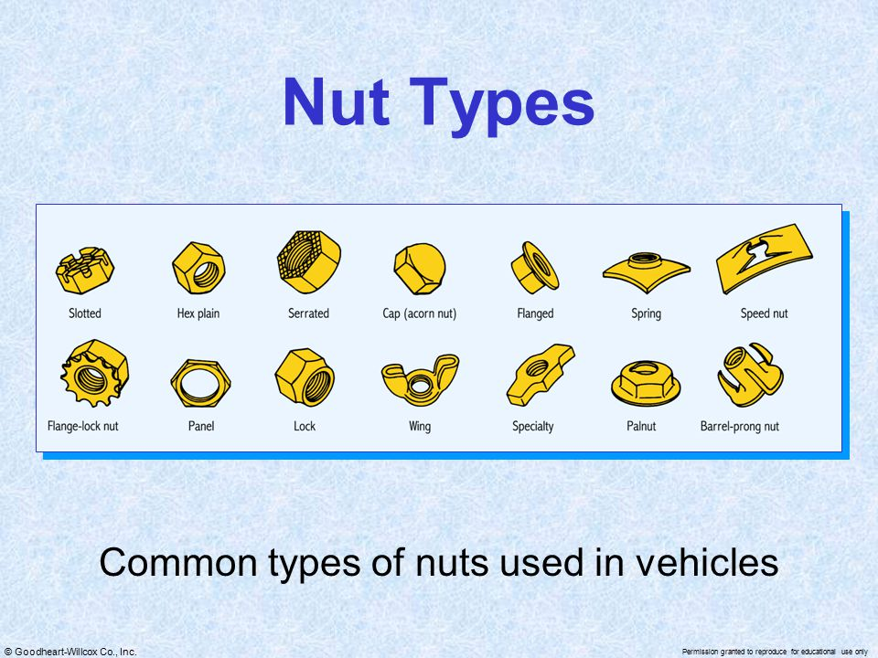 Common types of nuts used in vehicles