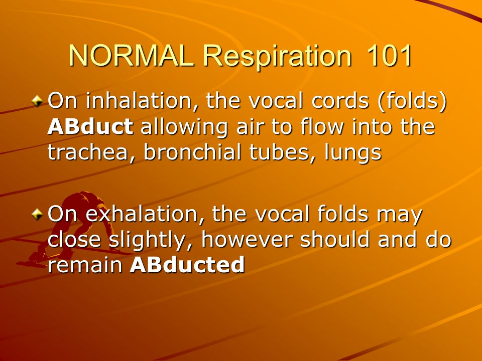 NORMAL Respiration 101 On inhalation, the vocal cords (folds) ABduct allowing air to flow into the trachea, bronchial tubes, lungs.