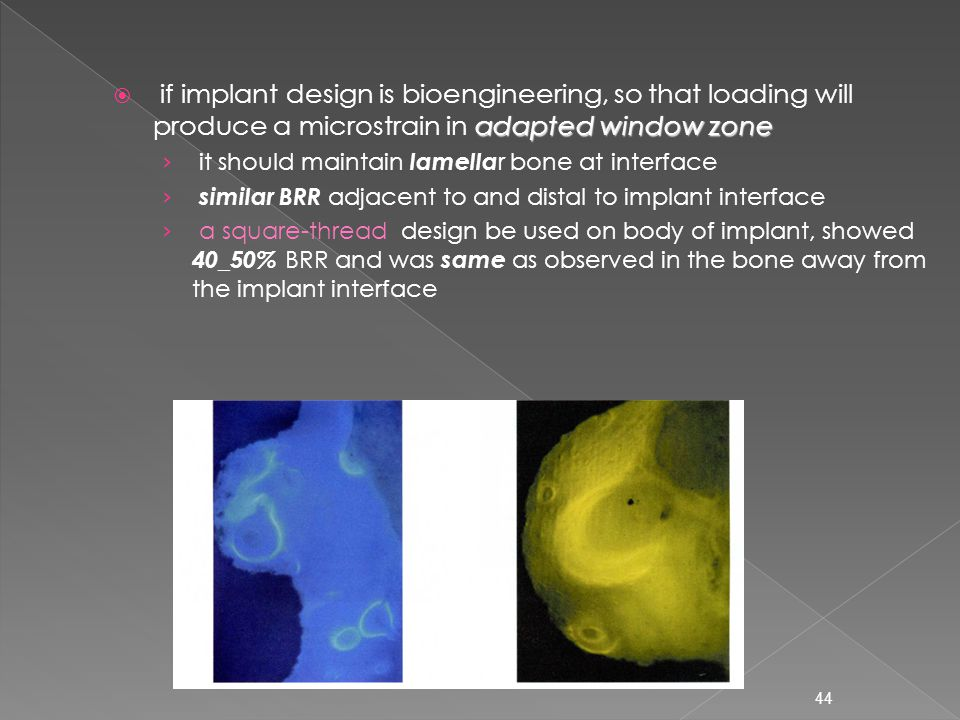 if implant design is bioengineering, so that loading will produce a microstrain in adapted window zone