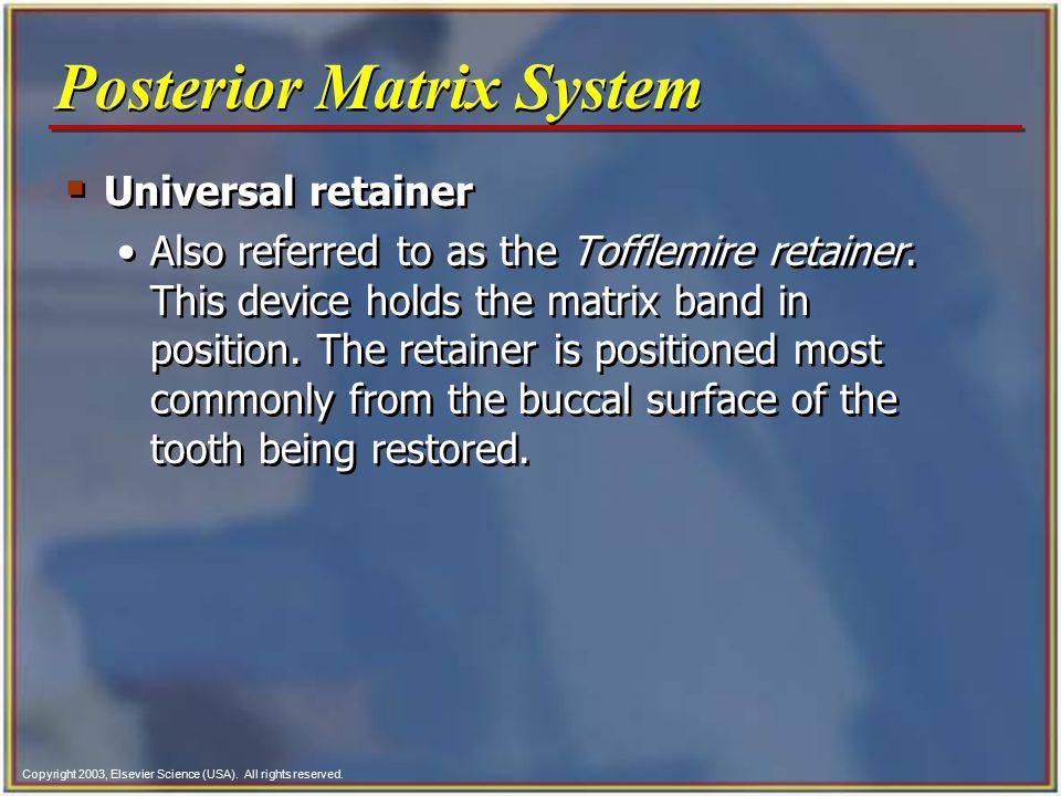 Posterior Matrix System