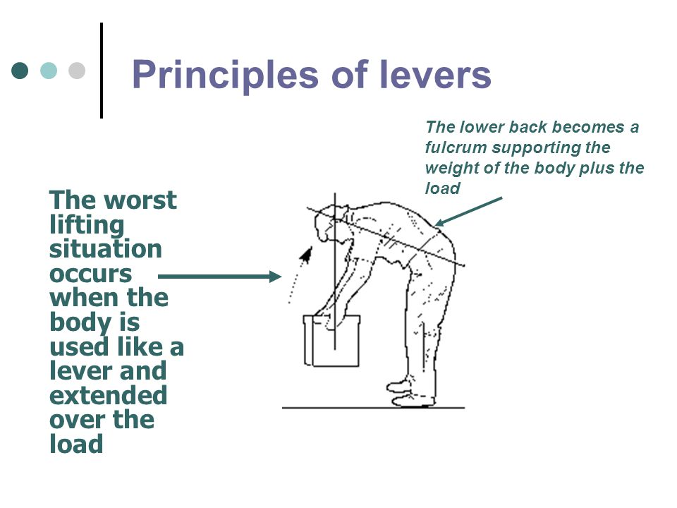 Principles of levers The lower back becomes a fulcrum supporting the weight of the body plus the load.