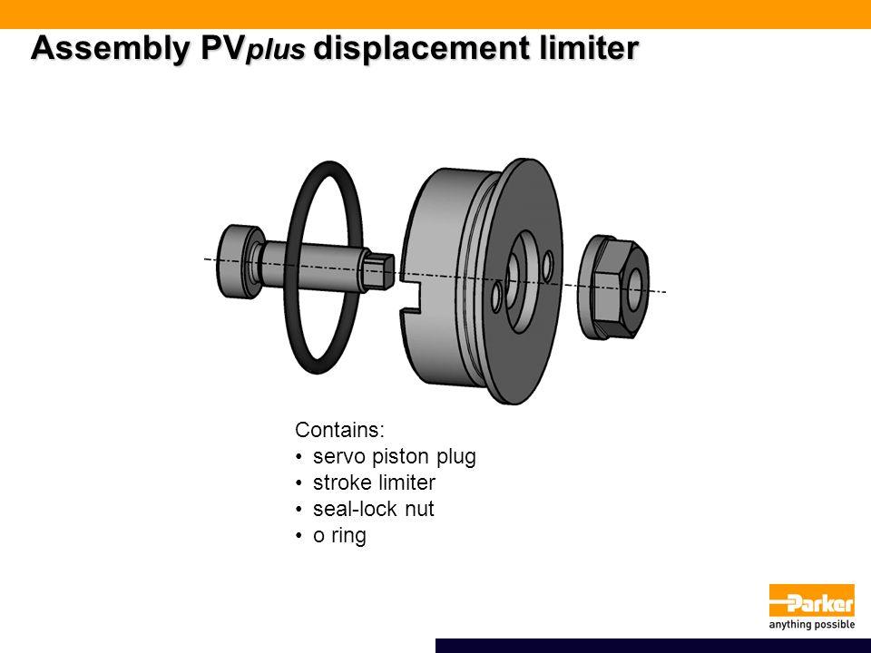 Assembly PVplus displacement limiter