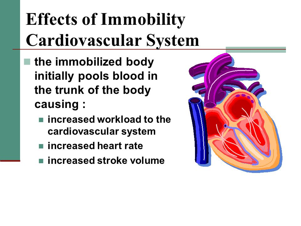 Effects of Immobility Cardiovascular System