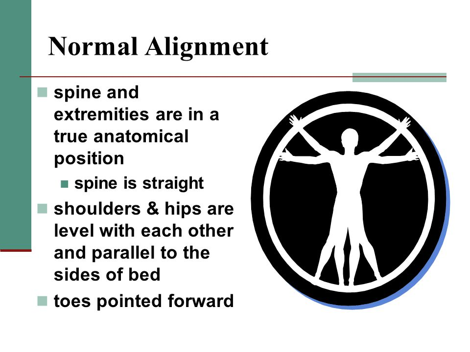 Normal Alignment spine and extremities are in a true anatomical position. spine is straight.
