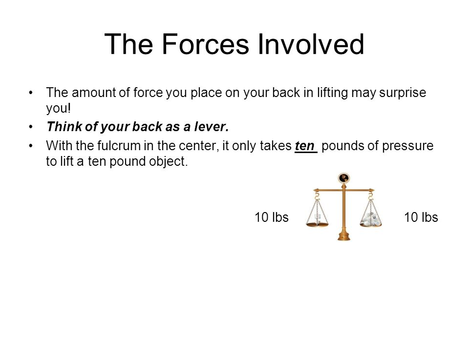 The Forces Involved The amount of force you place on your back in lifting may surprise you! Think of your back as a lever.
