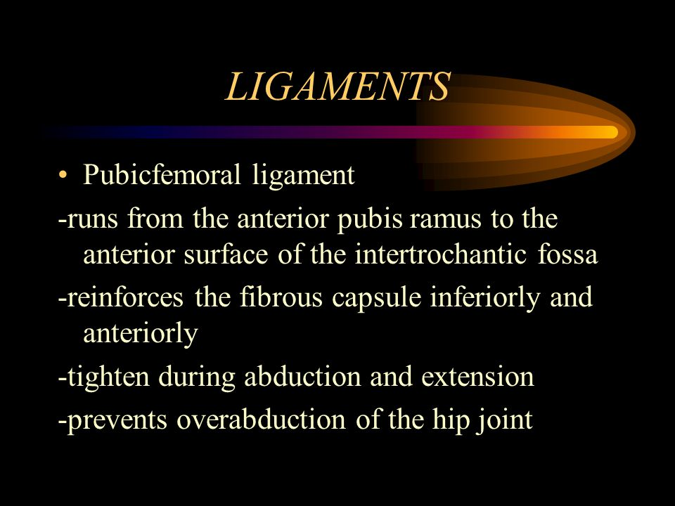 LIGAMENTS Pubicfemoral ligament
