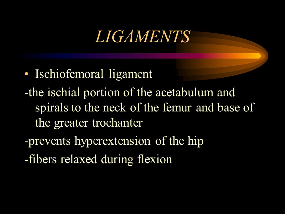 LIGAMENTS Ischiofemoral ligament
