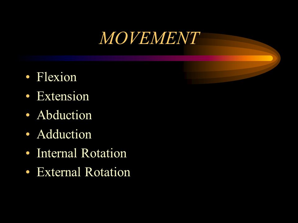 MOVEMENT Flexion Extension Abduction Adduction Internal Rotation
