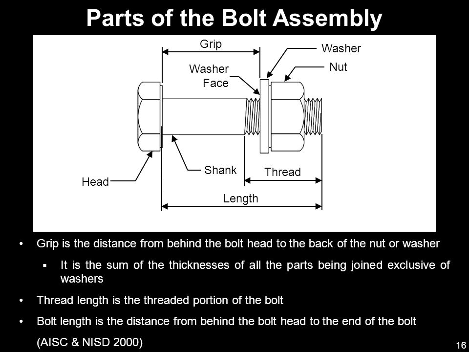 Parts of the Bolt Assembly