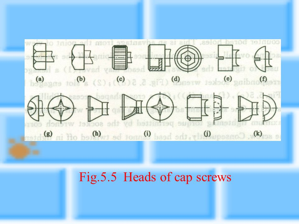 Fig.5.5 Heads of cap screws