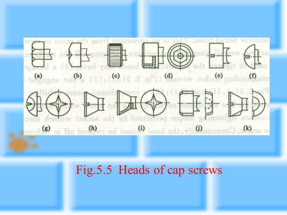 Fig.5.5 Heads of cap screws