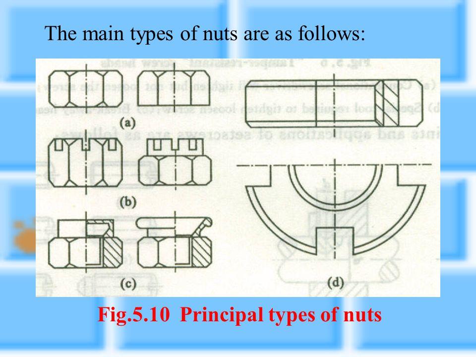 Fig.5.10 Principal types of nuts