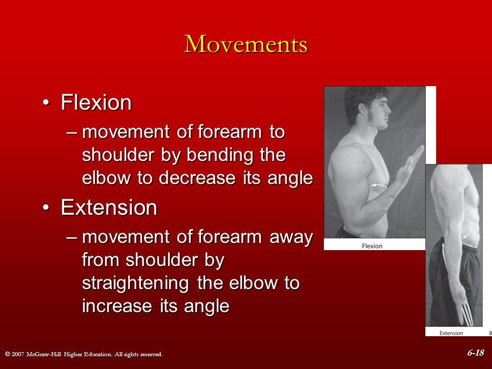 Movements Flexion Extension