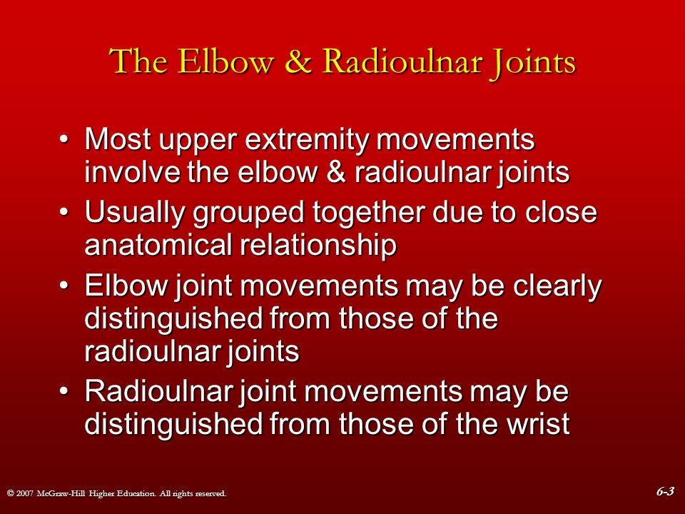 The Elbow & Radioulnar Joints