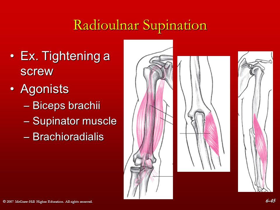 Radioulnar Supination