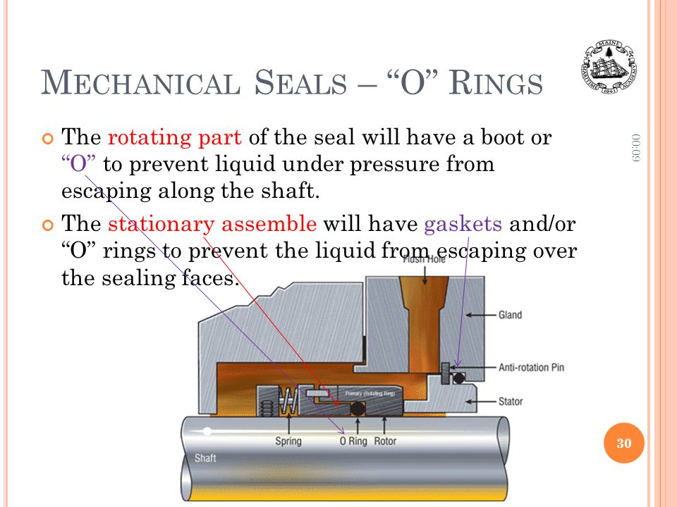 Mechanical Seals – O Rings