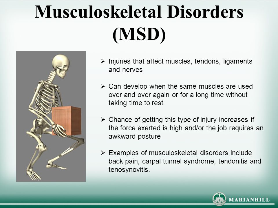 Musculoskeletal Disorders (MSD)