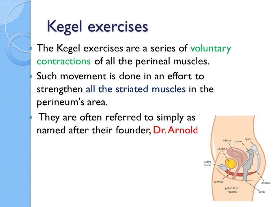 Kegel exercises The Kegel exercises are a series of voluntary contractions of all the perineal muscles.