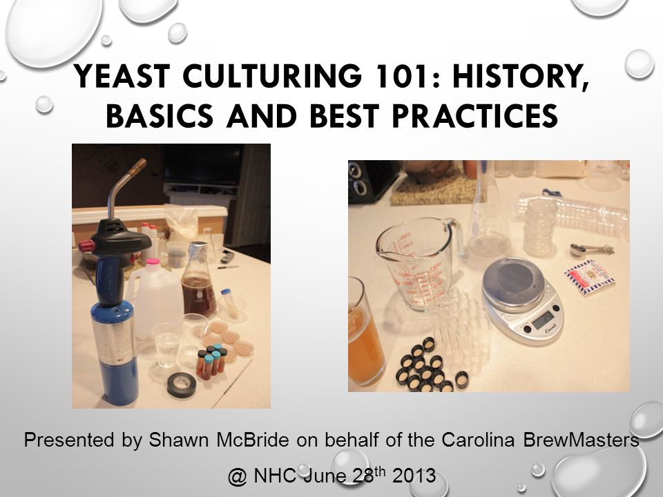 Yeast Culturing 101: History, Basics and Best Practices