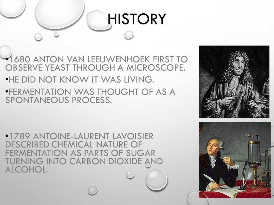 History 1680 Anton van Leeuwenhoek first to observe yeast through a microscope. He did not know it was living.