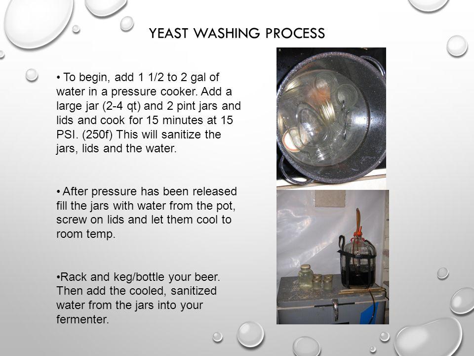 Yeast Washing Process