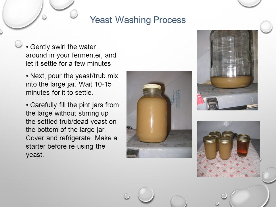 Yeast Washing Process Gently swirl the water around in your fermenter, and let it settle for a few minutes.
