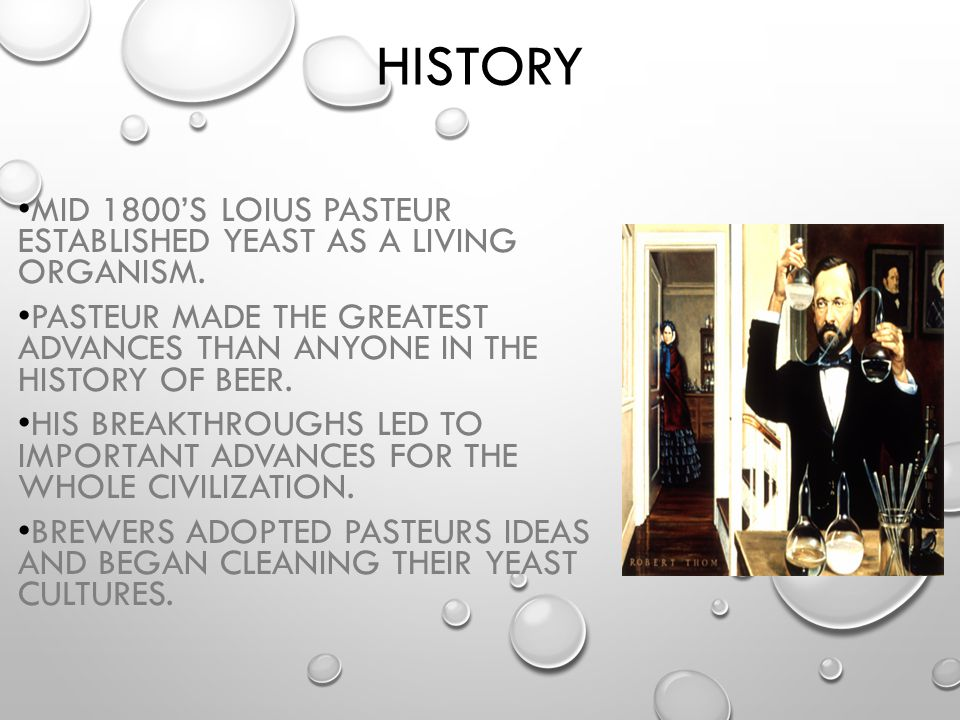 History Mid 1800's Loius Pasteur established yeast as a living organism. Pasteur made the greatest advances than anyone in the history of beer.