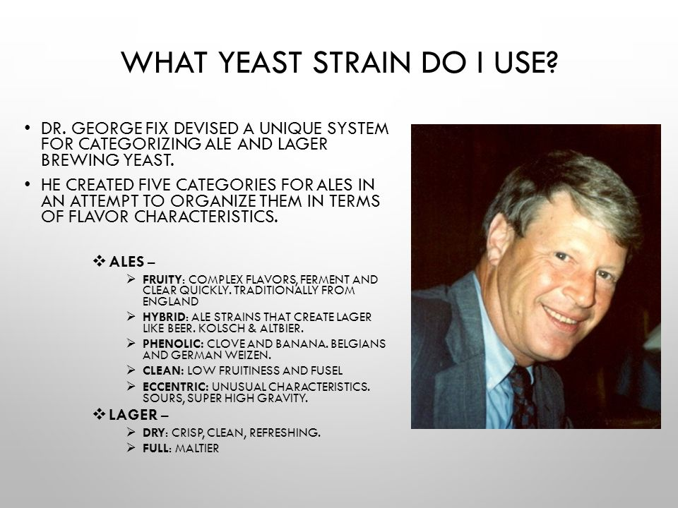 What Yeast Strain Do I Use