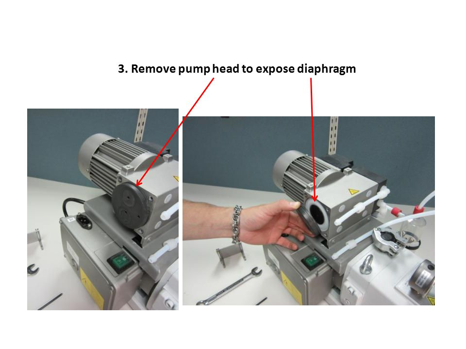 3. Remove pump head to expose diaphragm
