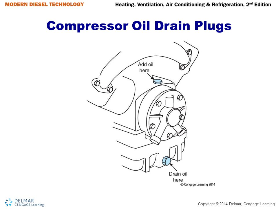 Compressor Oil Drain Plugs