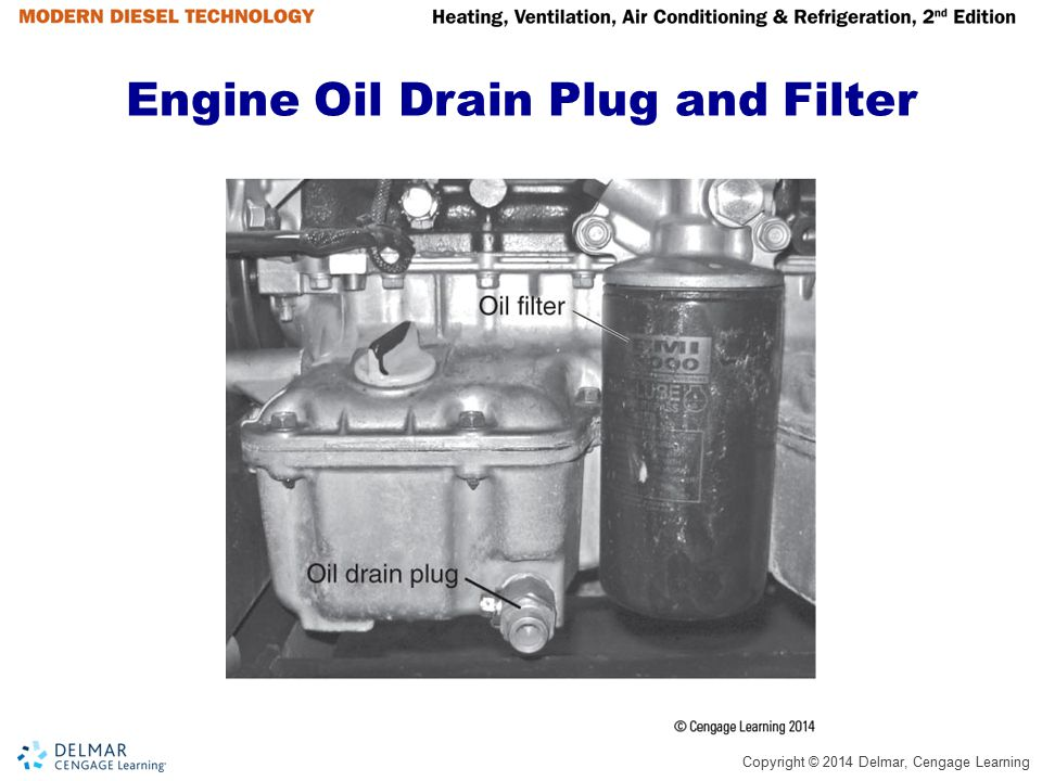 Engine Oil Drain Plug and Filter