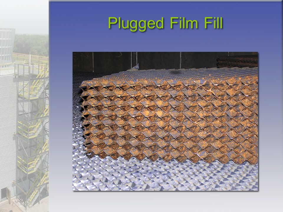Plugged Film Fill