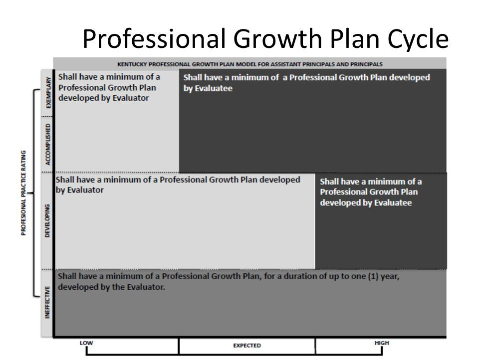Professional Growth Plan Cycle