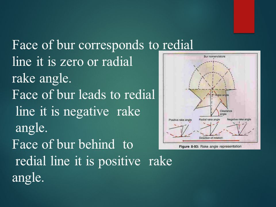 Face of bur corresponds to redial line it is zero or radial