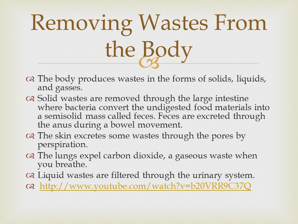 Removing Wastes From the Body