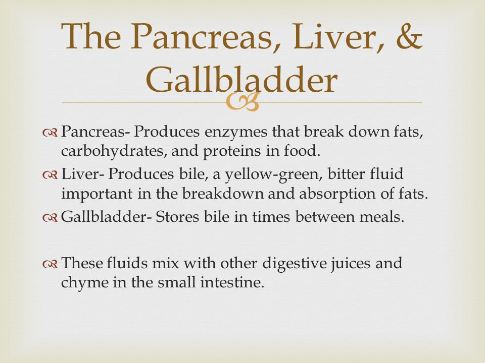 The Pancreas, Liver, & Gallbladder