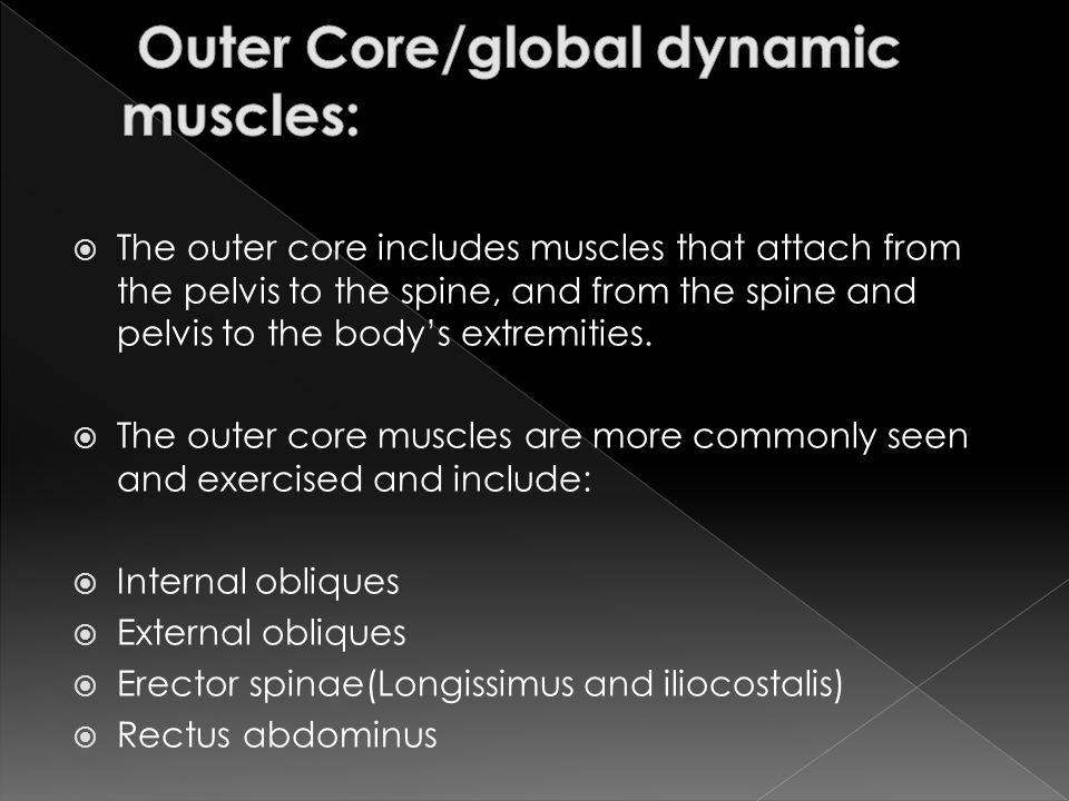 Outer Core/global dynamic muscles:
