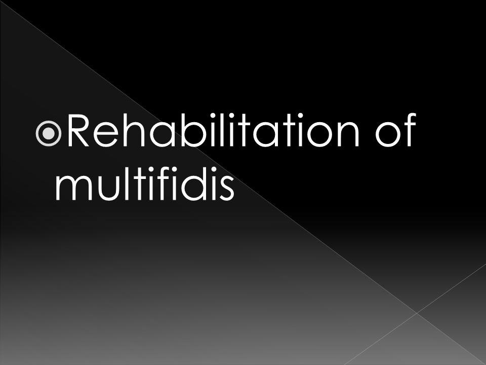Rehabilitation of multifidis