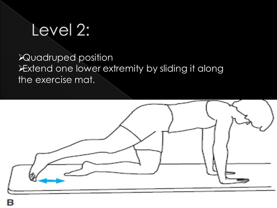 Level 2: Quadruped position