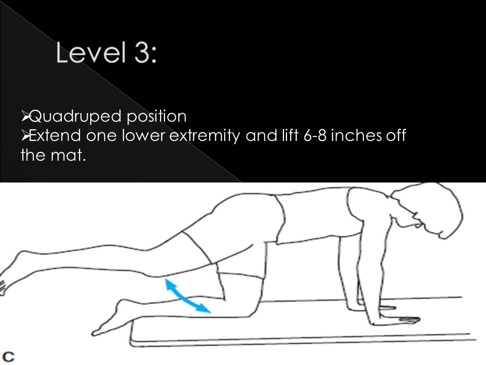 Level 3: Quadruped position