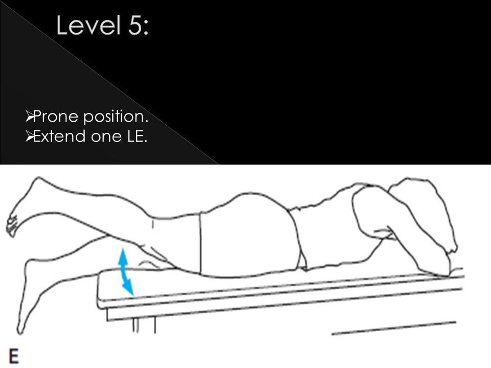 Level 5: Prone position. Extend one LE.