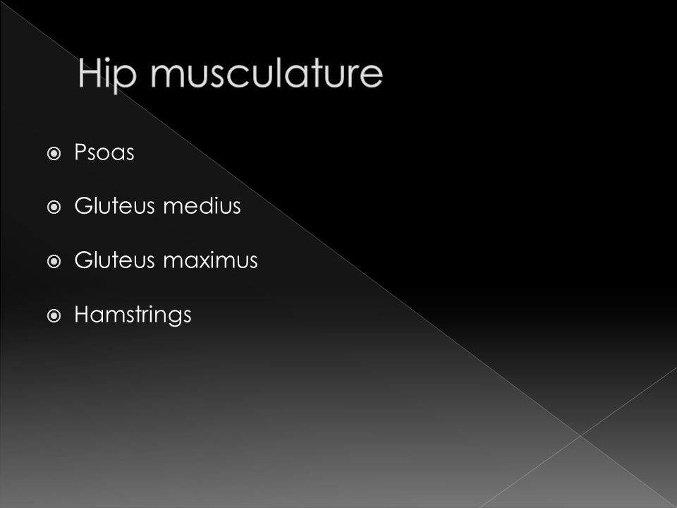 Hip musculature Psoas Gluteus medius Gluteus maximus Hamstrings