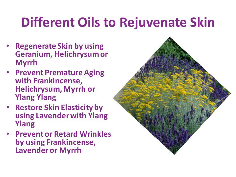 Different Oils to Rejuvenate Skin