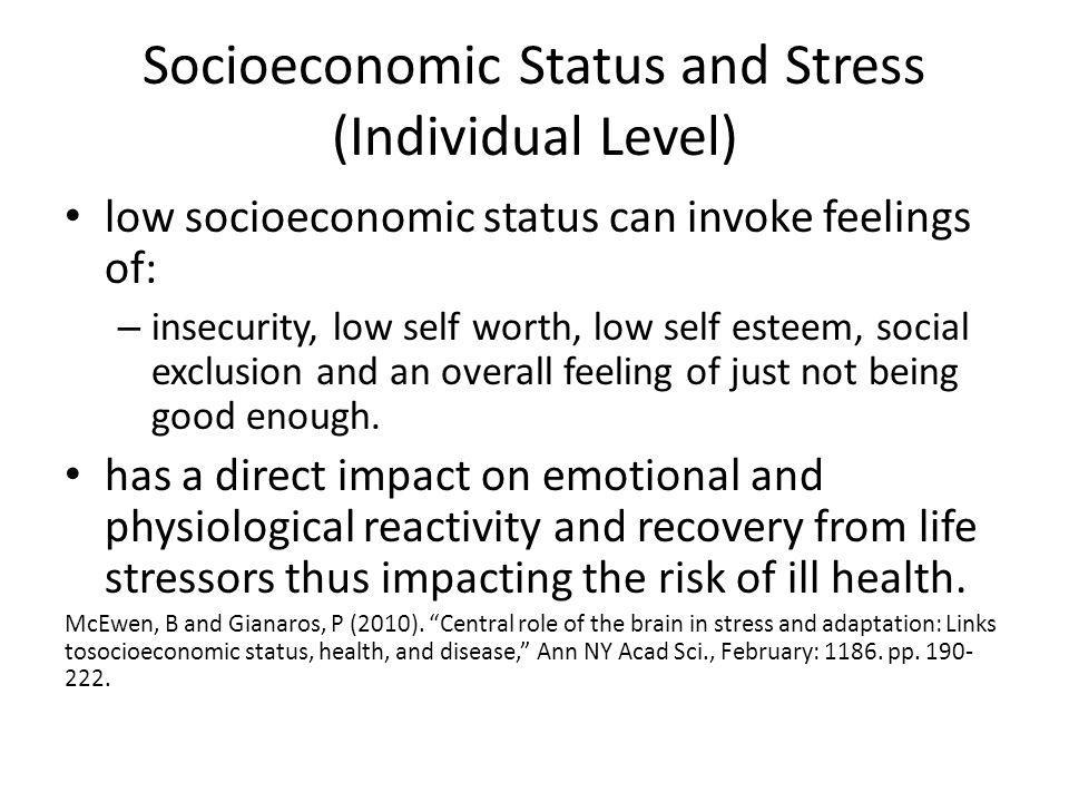 Socioeconomic Status and Stress (Individual Level)