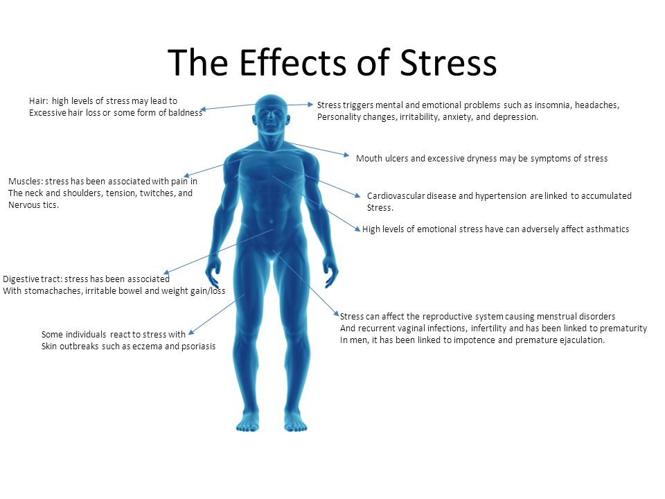 The Effects of Stress Hair: high levels of stress may lead to