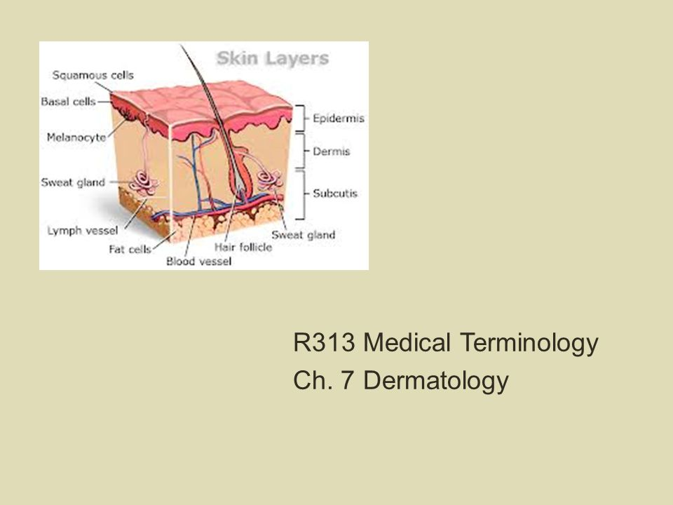 R313 Medical Terminology Ch. 7 Dermatology