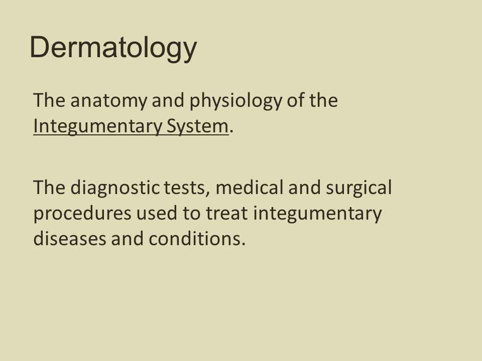 Dermatology The anatomy and physiology of the Integumentary System.
