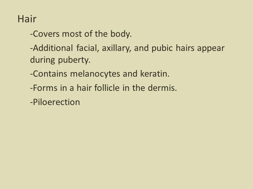 Hair -Covers most of the body.